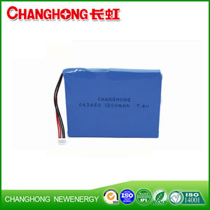 GPS Lithium Battery